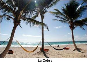 La Zebra Tulum Mexico