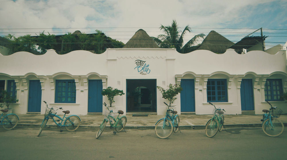Toto Blue Bacalar